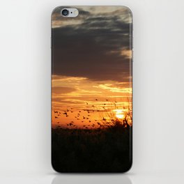 sunset and birds iPhone Skin
