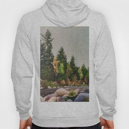 Upstate New York Gorges Hoody