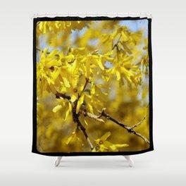 Forsythia ttv photo Shower Curtain