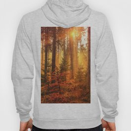 The Golden Hour (Color) Hoody