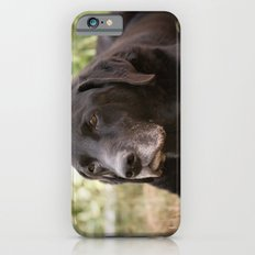Elder iPhone 6s Slim Case