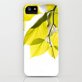 Twig with young green leaves on white iPhone Case