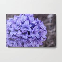 Purple Perfume Metal Print