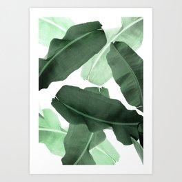 Green Banana Leaf Art Print