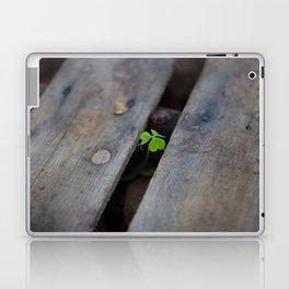 Clover Laptop & iPad Skin