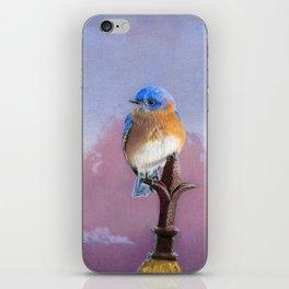 Backyard Bluebird iPhone Skin