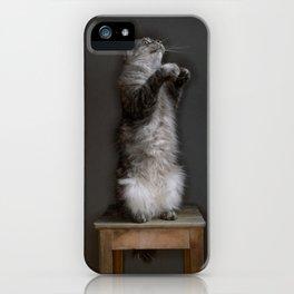 Cat standing iPhone Case