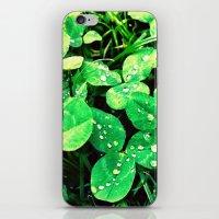 irish iPhone & iPod Skins featuring Irish by Kelly Dillon