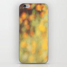 Summer Haze iPhone & iPod Skin