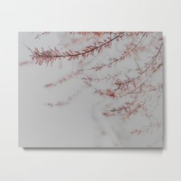 Soft Dusty Pink Lullaby Metal Print