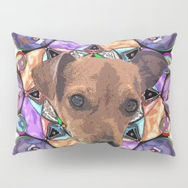 this is lenny Pillow Sham