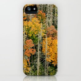 Oh, the Hemlocks! * Linville Gorge * B4 the Table Rock fire  iPhone Case