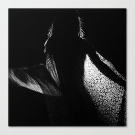 Unititled 02 Canvas Print