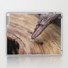 wood grain Laptop & iPad Skin