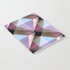 Facets 4 Notebook