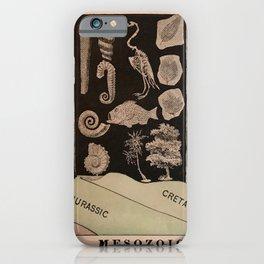 Mesozoic Era iPhone Case