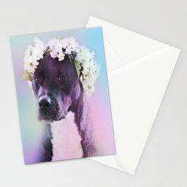 Majestic Milo Stationery Cards
