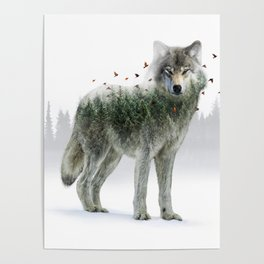 Wild I Shall Stay   Wolf Poster