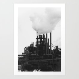 Smoky Bird Art Print