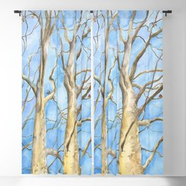Two Sycamore Trees Blackout Curtain