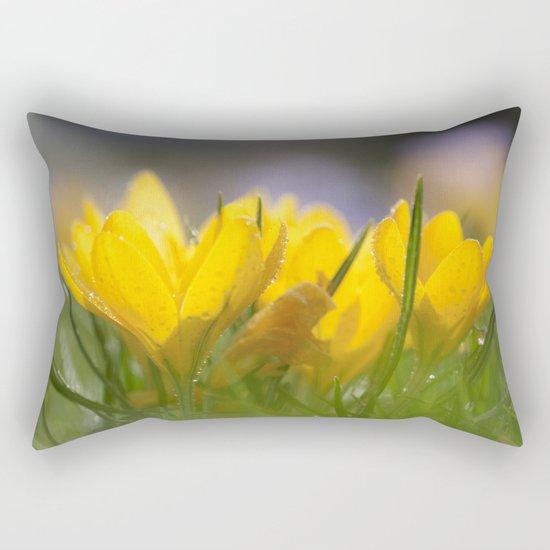 Yellow wet crocus at backlight Rectangular Pillow