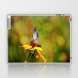 Brown Eyed Susan & Hairstreak Butterfly Laptop & iPad Skin