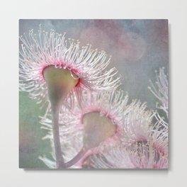 Sunlit Gum Blossoms Metal Print