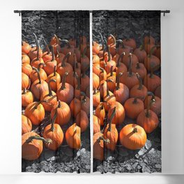 Pumpkin Season Blackout Curtain