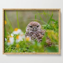 Owl in Flowers Serving Tray