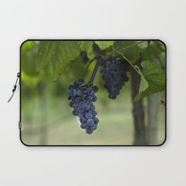 Cluster of purple grapes hanging under grapevine in vineyard Laptop Sleeve