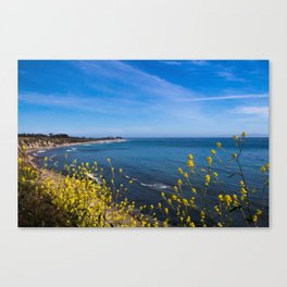 Blooming Flowers on the Pacific Coast Canvas Print