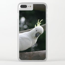 What do you have to eat? Clear iPhone Case