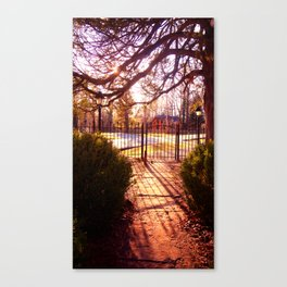 Sunset thru Trees Canvas Print