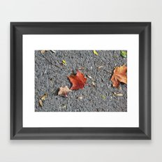 Autumn Asphalt Framed Art Print