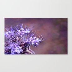 Purple Tips Canvas Print