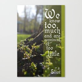 Convinced of Too Little Canvas Print