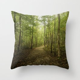 Trail To Elijah Oliver's Cabin Throw Pillow