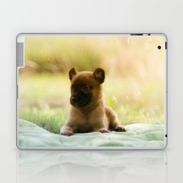 Malinois puppies in the soap blowing game Laptop & iPad Skin