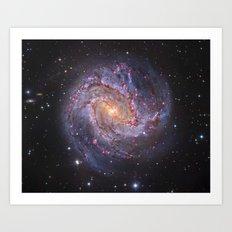 Galaxy fossils Art Print
