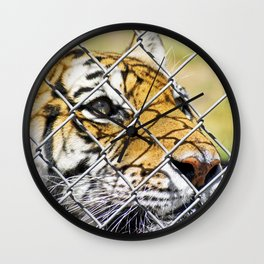 Tiger Dreams Wall Clock