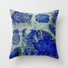 A Stone Hedgehog Throw Pillow