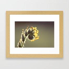 Curl Framed Art Print