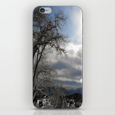 Winter in Spring iPhone & iPod Skin