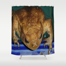 Bufo Bufo Clinging To The Edge Of A Swimming Pool Shower Curtain