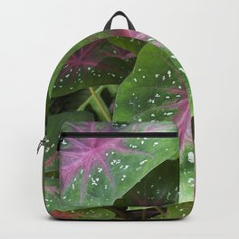 Caladium Backpack