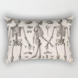1857 Diagram Anatomy including Skeletons Rectangular Pillow