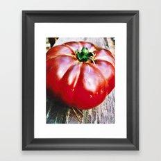 Tomato Heirloom Framed Art Print