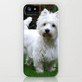 Westie in the garden iPhone Case
