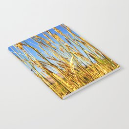Dragonfly in tall dry grass Notebook