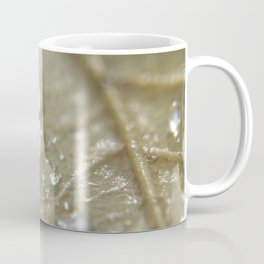 raindrops on fallen leaf Coffee Mug